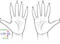 Tricks for multiplying by 9