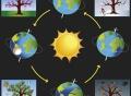 The Earth orbits the sun.